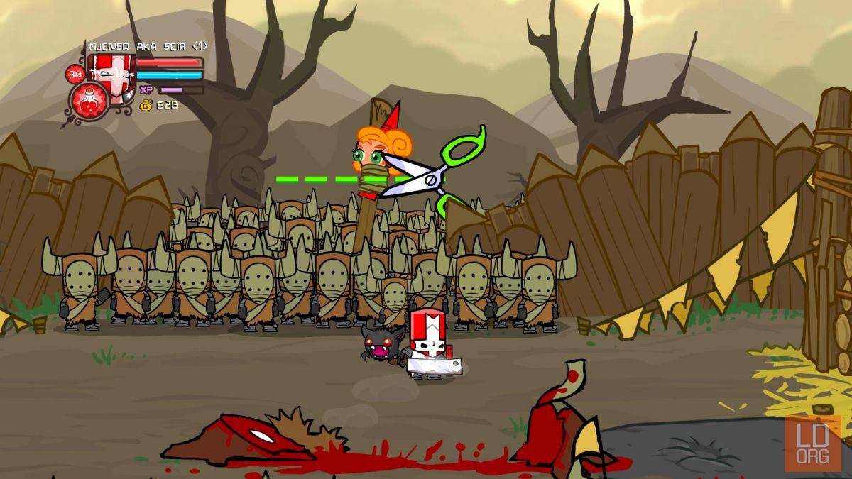 Castle_Crashers_0048.jpg