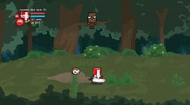 Castle Crashers 0055