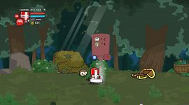 Castle Crashers 0056