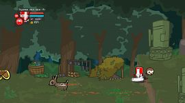 Castle Crashers 0057
