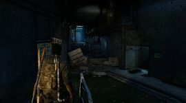 TLOU Remastered 0079