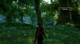 DragonAgeInquisition 0056